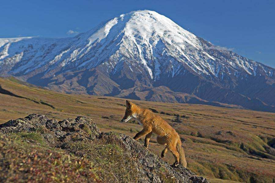 Извержение вулкана Ключевская сопка. Три года спустя.