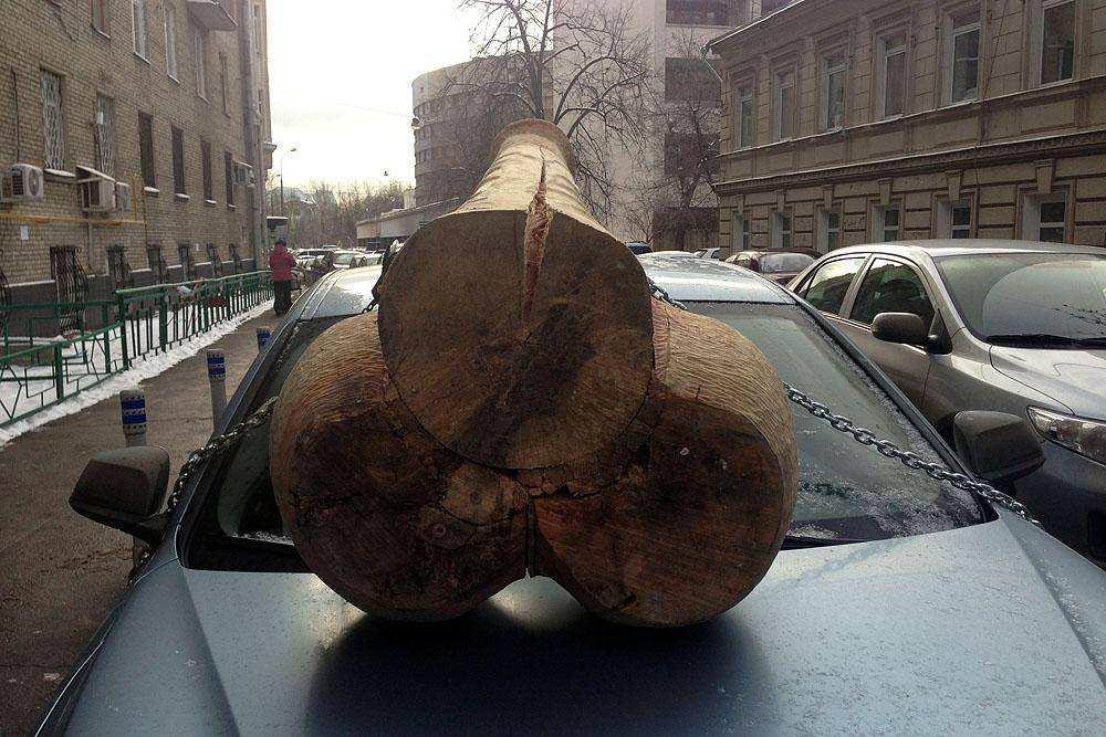 Деревянный член на машине