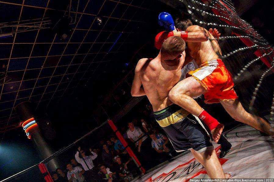 Всеукраинский турнир по Боям без Правил