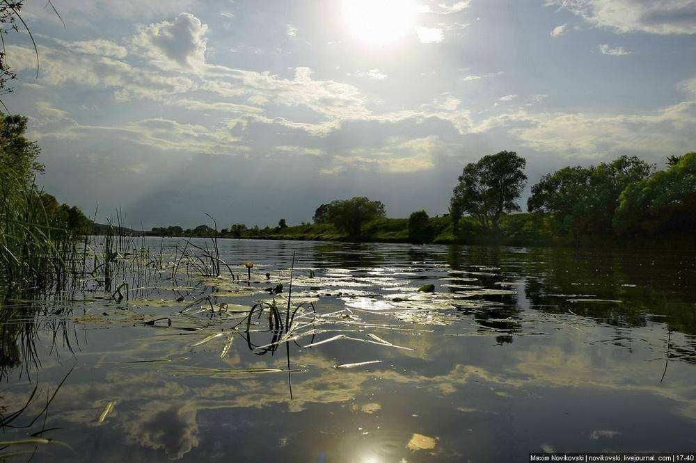 На веслах по реке Оке