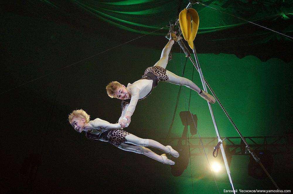 Цирковой фестиваль