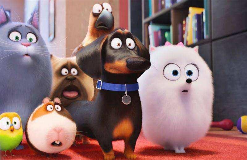 Всероссийская премьера «Тайной жизни домашних животных» состоится вНижнем Новгороде 10августа