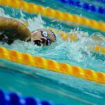В Москве завершился чемпионат России по плаванию