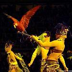 «Страшная сила» Запашных в «Лужниках»