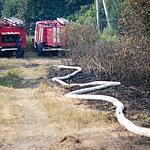В Тверской области горят леса
