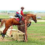 8 сезон международного конного турнира по троеборью прошел в Раменском