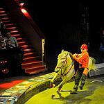 Цирк на Вернадского