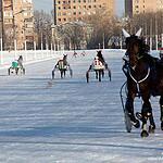Один морозный день на Московском ипподроме