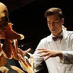 Тайны тела: анатомия для всех