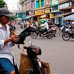 Вьетнам.