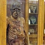 МГМУ. Музей анатомии