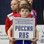 Гимнастический турнир на Кубок Михаила Воронина