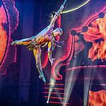 «Королевский цирк»