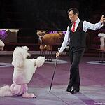 «Браво!» в Цирке Никулина
