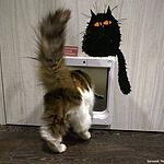 Котокафе «Котики и люди»