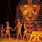 Цирковое шоу Дарьи Костюк
