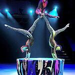 Фестиваль циркового искусства